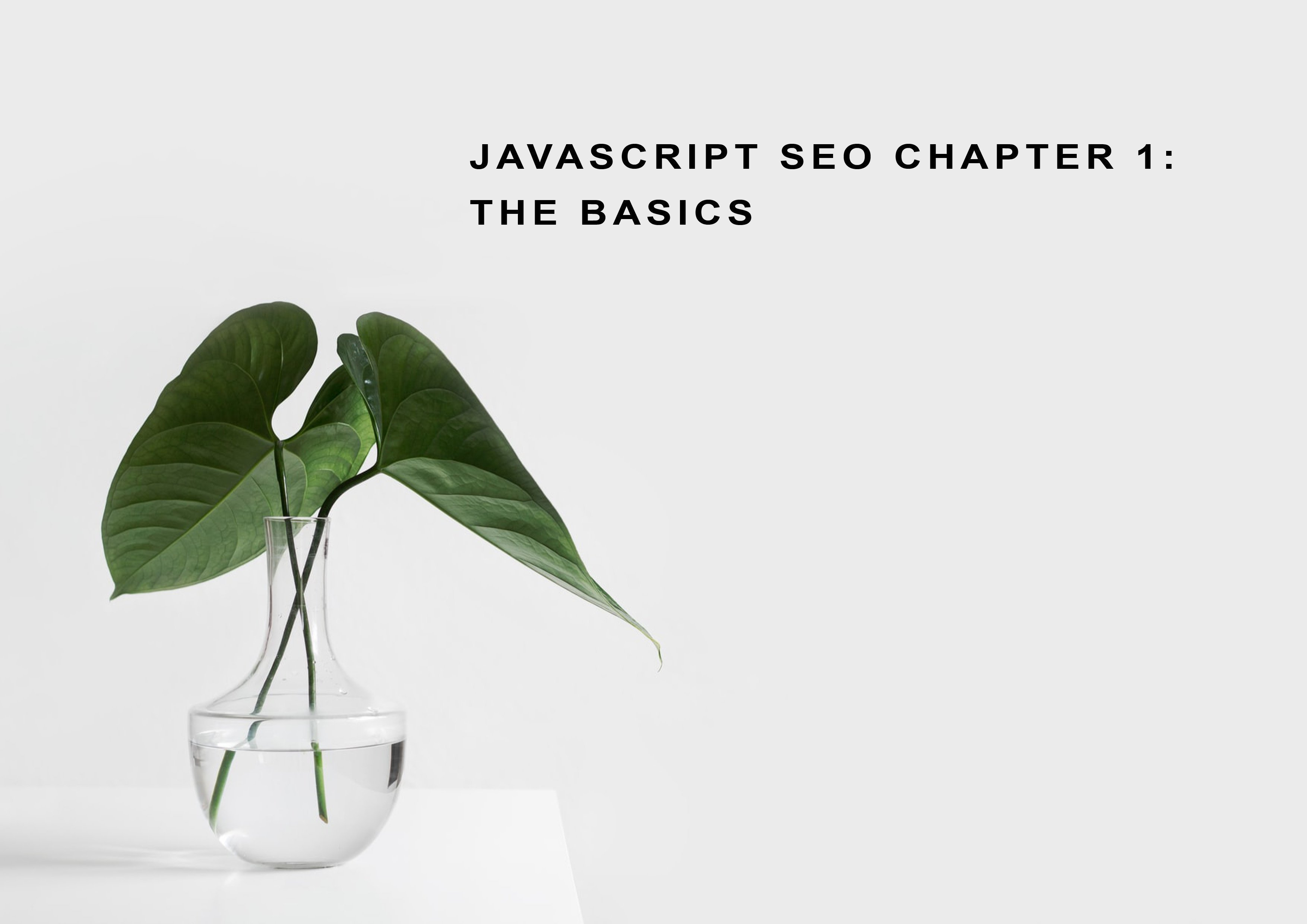 Javascript SEO Part 1: What is Javascript and How it is used?